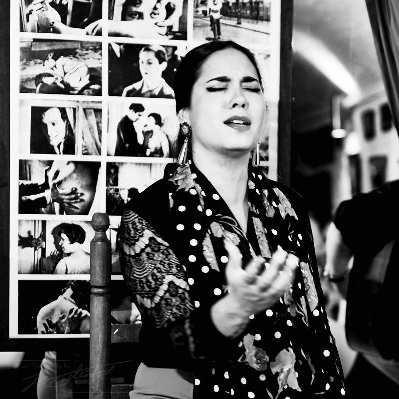 Marian Fernandez - Le Chien Andalou 2017